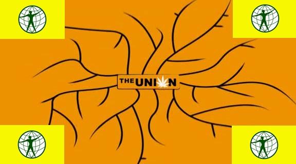 THE UNION 16